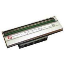 Głowica drukarki Zebra TLP151